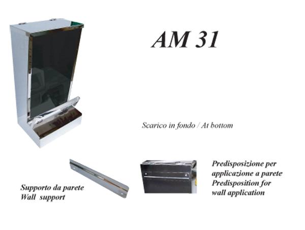 AM 31